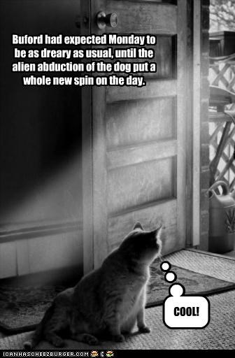 COOL! Buford had expected Monday to be as dreary as usual, until the alien abduction of the dog put a whole new spin on the day.