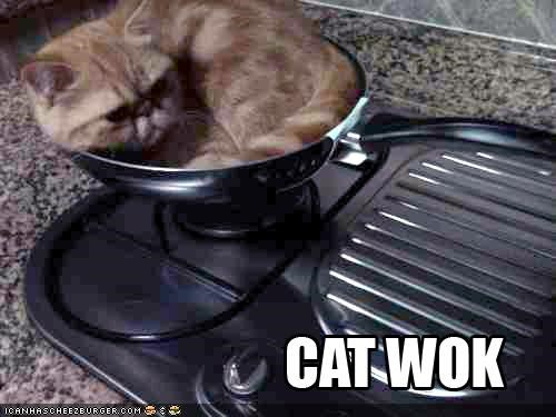 comfort is relative,cooking,food,pun,pun run,puns,wok