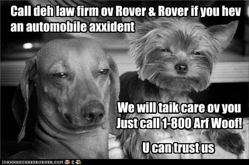 Call deh law firm ov Rover & Rover if you hev an automobile axxident We will taik care ov you Just call 1-800 Arf Woof! U can trust us