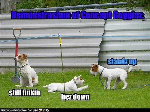 Demonstrashun of Concept Goggiez: still finkin liez down standz up