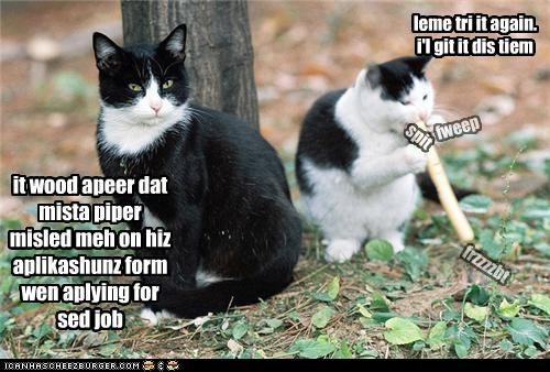 Cheezburger Image 4179750144