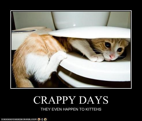 CRAPPY DAYS THEY EVEN HAPPEN TO KITTEHS