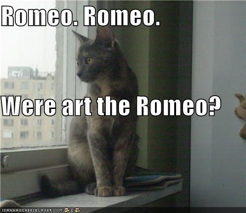 Romeo. Romeo. Were art the Romeo?