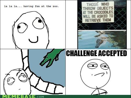 challenge accepted guy,crocodile,Memes,zoo