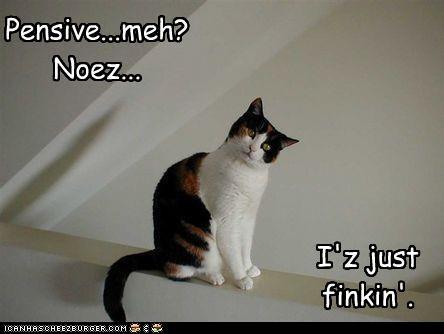 Pensive...meh? Noez... I'z just finkin'.