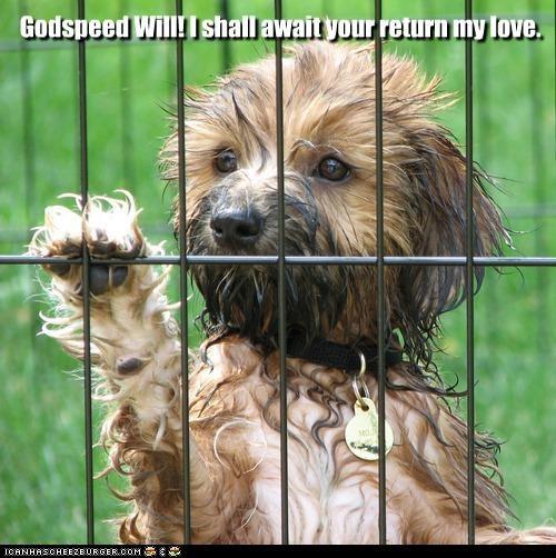 Godspeed Will! I shall await your return my love.