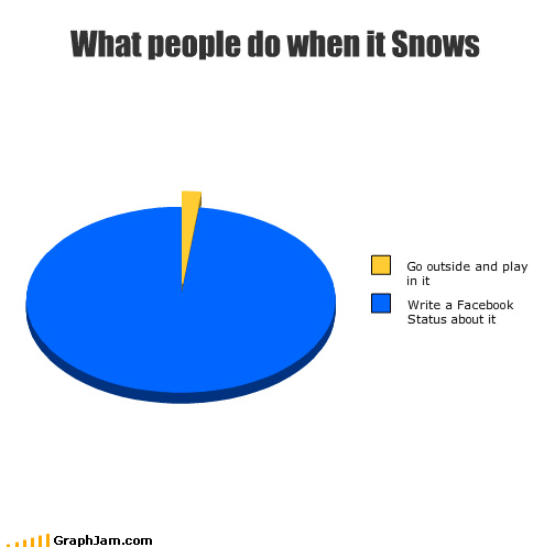 facebook,let it snow,offline,outside,Pie Chart,snow,weather