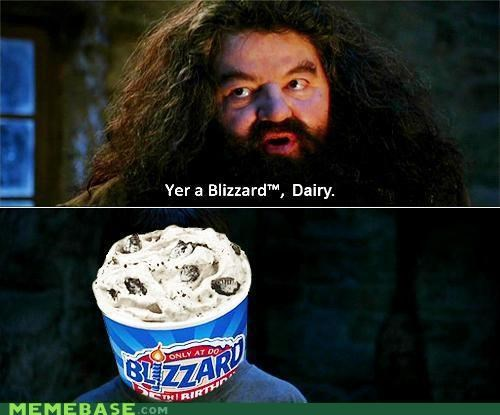 Hagrid Harry Potter Hogwarts Memes witchcraft wizardry - 4183807488