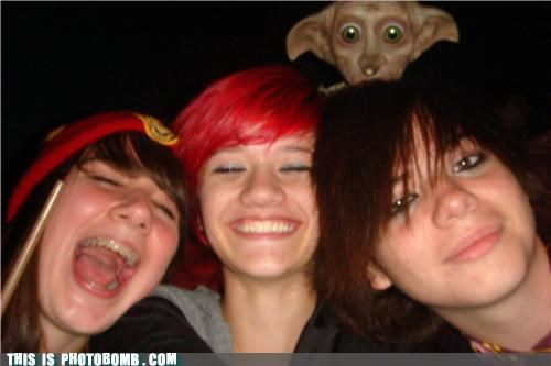 creature,Dobby,girls,Harry Potter,photobomb