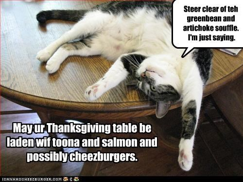 advice,artichoke,best wishes,caption,captioned,cat,caution,green bean,happy,souffle,steer clear,thanksgiving