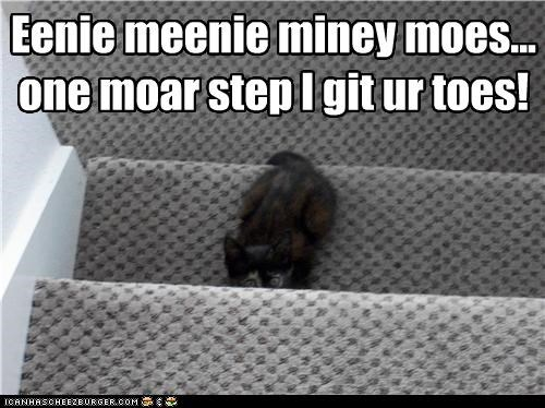 caption captioned cat eenie got-em hiding kitten meenie miney moe rhyme stairs toes - 4188106240