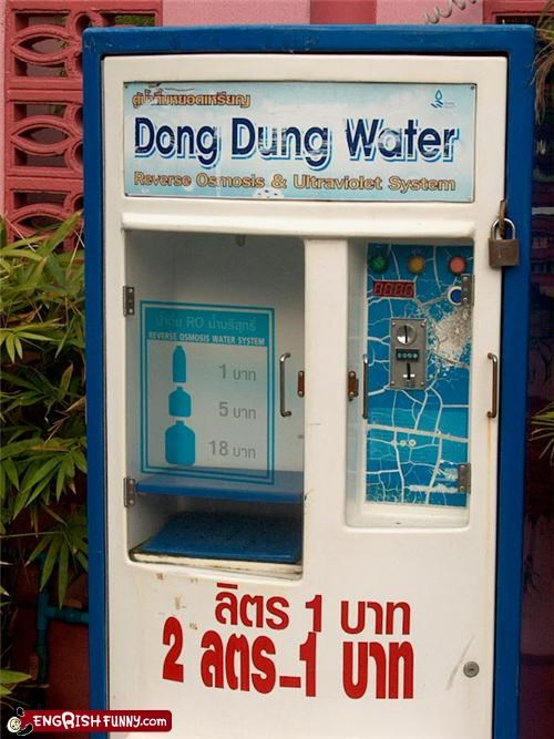 dung,water,wtf
