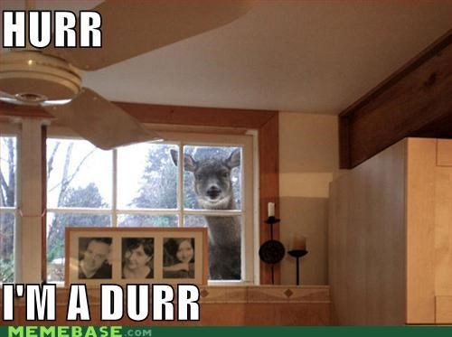 creeper,critters,deer,derp,house,windows