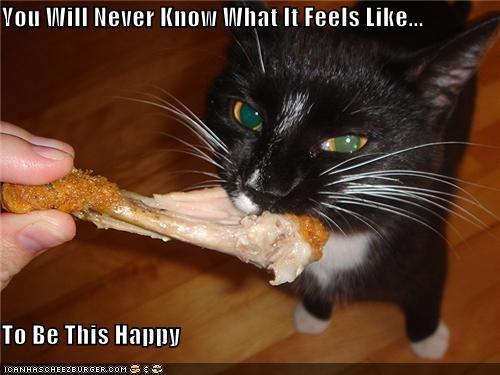 Cheezburger Image 4190766336