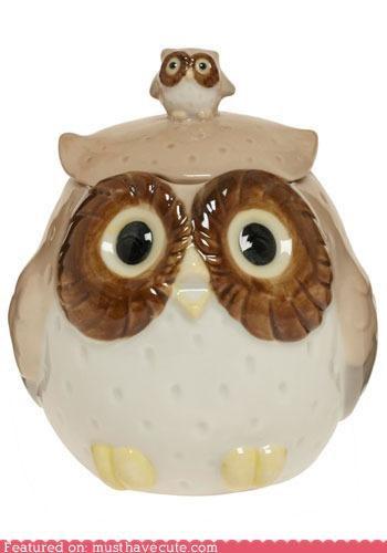 cute-kawaii-stuff-owl-have-a-small-tea-covered-mug Kitchen Gadget - 4191623168