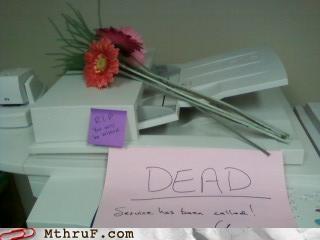 dead,flowers,printer,rip