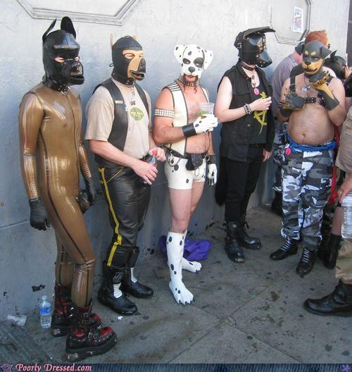 dudes,rubber clothes,sm,wolf pack