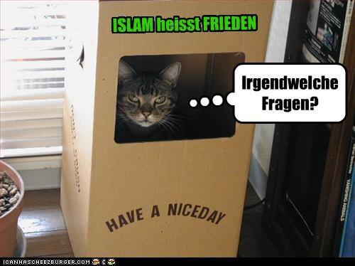 ISLAM heisst FRIEDEN Irgendwelche Fragen?