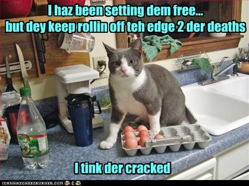 I haz been setting dem free... but dey keep rollin off teh edge 2 der deaths I tink der cracked Chech1965 231110