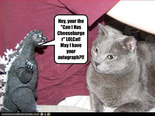 """Hey, your the """"Can I Has Cheeseburger"""" LOLCat! May I have your autograph?!!"""