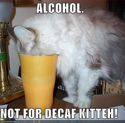 ALCOHOL.  NOT FOR DECAF KITTEH!