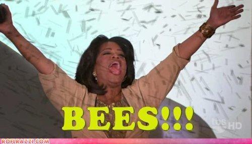 celeb,oprah,shoop