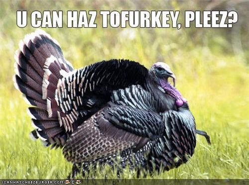 caption captioned dont-eat-me eating food holidays thanksgiving tofurkey Turkey - 4196794880