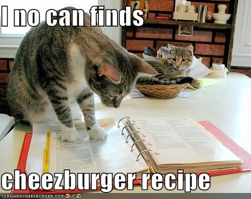 Cheezburger Image 4197024000