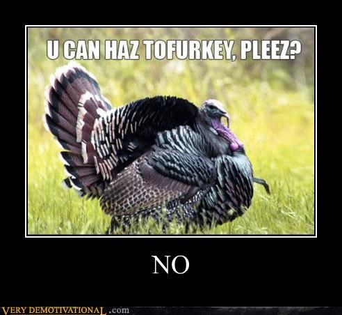 animals,debate,food,holidays,simple answer,thanksgiving,tofu,Turkey,veganism