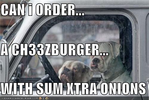 Cheezburger Image 4198623488