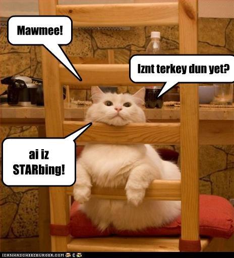 Iznt terkey dun yet? ai iz STARbing! Mawmee!