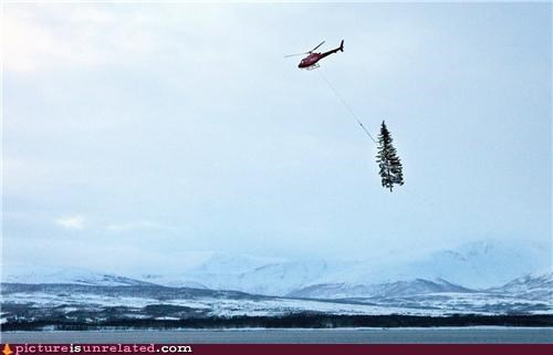 helicopter,holidays,really wtf,tree,wtf