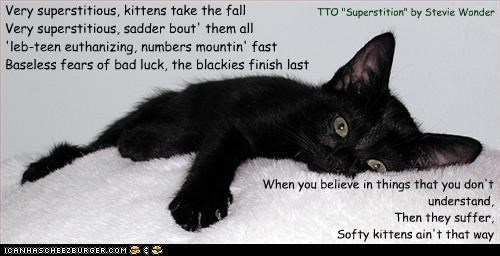 "Very superstitious, kittens take the fall Very superstitious, sadder bout' them all 'leb-teen euthanizing, numbers mountin' fast Baseless fears of bad luck, the blackies finish last When you believe in things that you don't understand, Then they suffer, Softy kittens ain't that way TTO ""Superstition"" by Stevie Wonder"