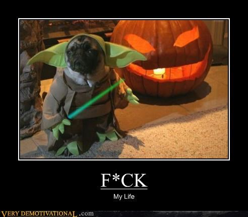costume,horrible,yoda,dogs