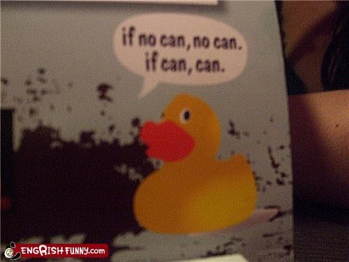rubber duck,wax on wax off,Words Of Wisdom