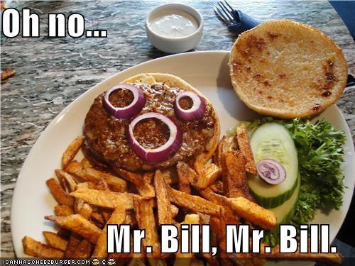 Cheezburger Image 4203594752