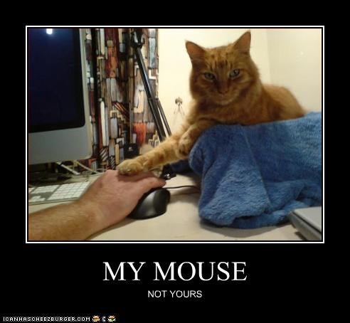 MY MOUSE NOT YOURS