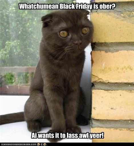 Whatchumean Black Friday is ober? Ai wants it to lass awl yeer!