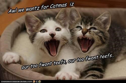 Awl we wantz for Catmas iz our too fwont teefs, our too fwont teefs..