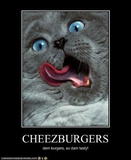 CHEEZBURGERS dem burgers, so dam tasty!