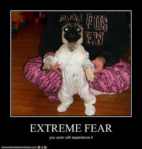EXTREME FEAR you soon will experience it