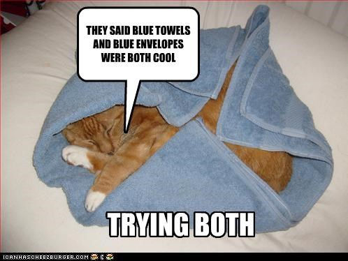 THEY SAID BLUE TOWELS AND BLUE ENVELOPES WERE BOTH COOL TRYING BOTH
