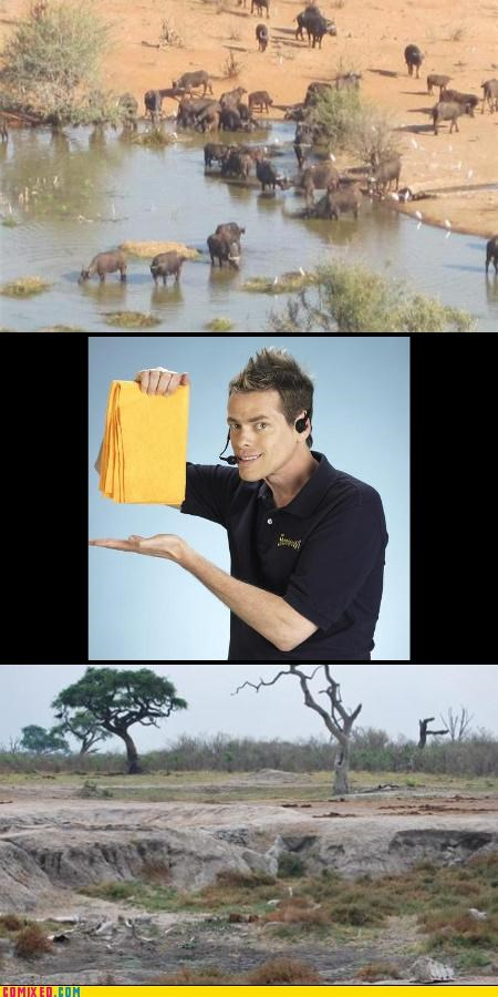 africa,celebutard,flooding,lol,magic,Shamwow,TV,Vince