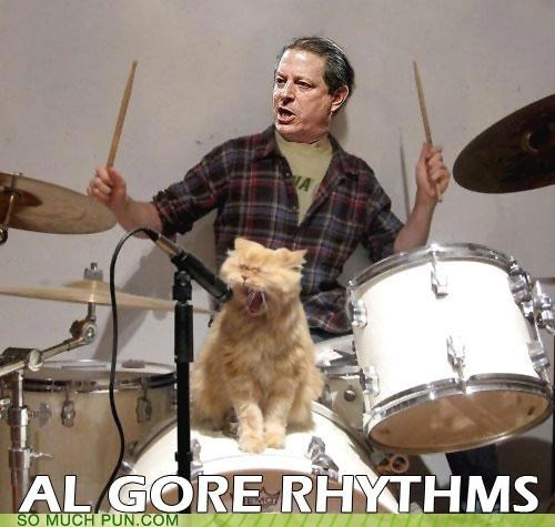 Al Gore algorithms an inconvenient truth band homophones inconvenient math rock rhythms truth vice president