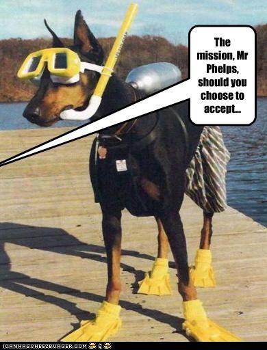 Cheezburger Image 4209953024
