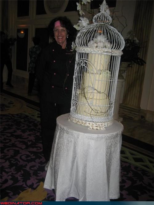 bird cage wedding decoration,caged wedding cake,confusing,Dreamcake,funny wedding cake picture,funny wedding photos,surprise,technical difficulties,trapped wedding cake,unique wedding cake,wedding cake,wtf