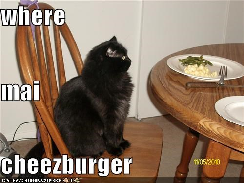 Cheezburger Image 4212062976