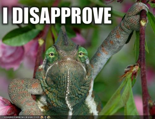 caption captioned chameleon disappointed disapprove grumpy lizard old man - 4212864512
