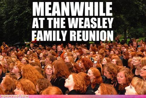 funny,ginger,Hall of Fame,weasley