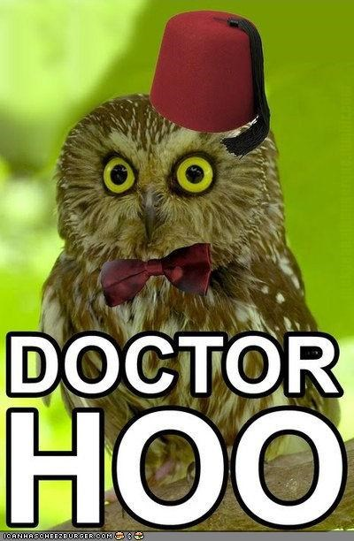 caption,captioned,doctor who,owls,photoshopped,puns,sci fi
